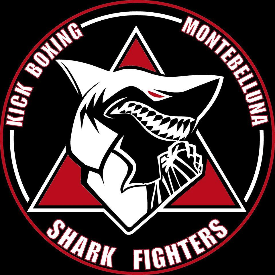 logo shark fihgters