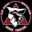 logo shark fihgters
